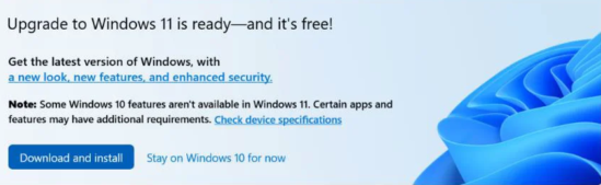 Windows 11 Known Issues